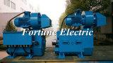 Hochleistungsvertiefung des Wasser-400V, die Gleichstrom-Motor bohrt
