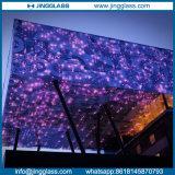 Защитное стекло фритты Spandrel оптового здания керамическое напечатанное цифров