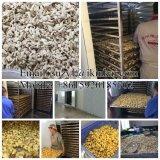 Nahrungsmittelindustrieller Trockner/Paprika-trocknende Maschine/Paprika, der Gerät entwässert