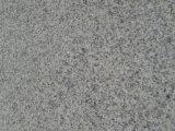 Mattonelle del granito della Cina e granito all'ingrosso di pietra naturali di bianco G655