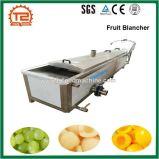Linha vegetal da esterilização, branqueador da fruta e máquina de descascamento vegetal do Sterilizer