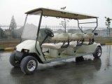 6 Lugares Automóvel Clube de energia da bateria carrinho de golfe