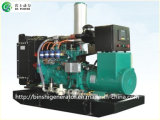200ква биогаза/метан мощность генераторов