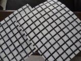 Geotessuto del composto di Geogrid della vetroresina di alta qualità