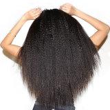 가장 싼 인간적인 인도 Hairyaki 머리 직물은 Remy 머리를 묶는다