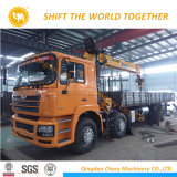 10 Your Hydraulic Telescopic Boom Truck Mounted Cranium
