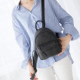 Schule-Beutel der Dame-Backpacks Girls Backpacks und Form-Rucksäcke