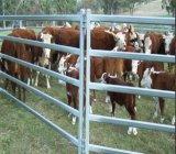 Painéis de aço do gado dos trilhos ovais de Austrália/painéis do cavalo/painéis dos carneiros