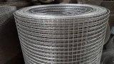 Fornitore del fornitore della Cina di rete metallica saldata galvanizzata per la gabbia di uccello