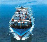 """国際的な海の船便、海洋の交通機関の運送業者(FCL 20 """" 40 """")"""