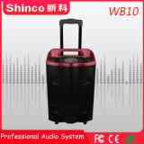 Shinco 2018 Karaoke des professionellen neuen Ankunft Bluetooth Radioapparates 10 '' leistungsfähiger Lautsprecher