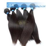 Пачки волос девственницы Weave 100% человеческих волос Alibaba Remy продуктов волос Kbl бразильские бразильские (BH-ST)