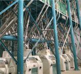 Ensemble complet 5-500T/24h moulin à farine fraiseuse
