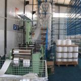 2018 8t de Slinger van het Web van de Polyester En1492 met Ce- Certificaat