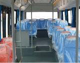 Inter bus della città di CNG della città del bus 53 della vettura pura di Seater