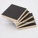 Encofrados de madera contrachapada de laminado de madera contrachapada / /Película Negra enfrenta la madera contrachapada