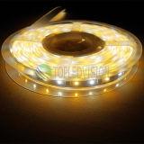 セリウム、RoHSが付いている高い明るさ60LEDs/M SMD5050 RGBW LEDの滑走路端燈