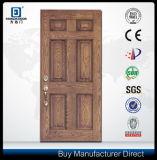 新しいデザインドアの皮のガラス繊維のドア