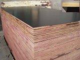 La madera contrachapada de la construcción, Dos-Tiempo-Caliente-Presiona la madera contrachapada hecha frente película, madera contrachapada comercial,
