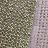 Cristallo caldo del rullo della catena del nastro di Strass di difficoltà, ferro della maglia sullo strato vetro/metallo del Rhinestone