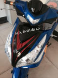 1500W Racing Electric Dirt Bike avec frein à disque (EM-004)