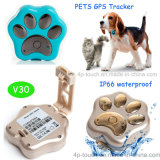 Миниый отслежыватель GPS сети 2g GSM для любимчика/собак/котов (V30)