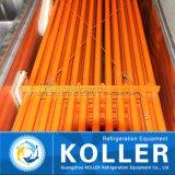 40 футов контейнерных льда машины с 4 т/день