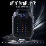 Aniti automne haut-parleur Bluetooth de plein air avec FM