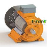 4kw 20rpm 자석 발전기, 3 단계 AC 영원한 자석 발전기, 낮은 Rpm와 바람 물 사용