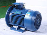 Y Series drie-Phase Asynchronous Y Three Phase Electric Motor 120kw