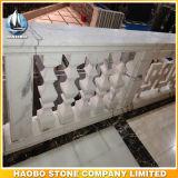 De Opgepoetste Kolommen van de Steen van het Traliewerk van het balkon Balustrade