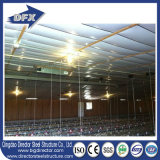 Large Large Steel Structure Poultry Broiler Farm