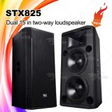 Skytone Stx825 verdubbelt de AudioLuidspreker Satge van PA 15 '' Proessional