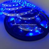 목욕탕을%s RGBW LED 지구