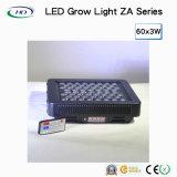 Il telecomando LED si sviluppa chiaro per le piante mediche