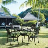 Tabella pranzante rotonda del buon di prezzi giardino caldo di vendita in materiale di alluminio anodizzato