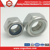 Écrous de blocage en nylon de garniture intérieure de Carbonstel de l'acier inoxydable DIN985