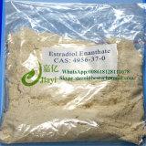 Polvere bianca Estradiol Enanthate dell'ormone della polvere per la femmina 4956-37-0