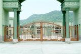 Deur Van uitstekende kwaliteit 15 van de Omheining van het Smeedijzer van de Veiligheid van Haohan Buiten Decoratieve