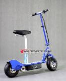 Faltbarer elektrischer Roller 300W (ES3002)