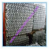 Le GV sûr a réussi le système d'échafaudage en métal pour la construction