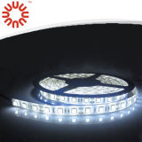 Buena calidad LED tira del RGB
