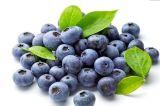 El mejor extracto del arándano 25%Anthocyanins para el alimento y la bebida/protegen vista