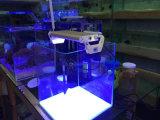 リモートおよびボタンが付いている高い明るさLEDのアクアリウムタンクライト