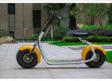 Barco Scooter elétrico desabilitado portátil de 2 rodas portátil mais barato