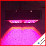 Indoor Plant Grow System LED Grow Light 300W