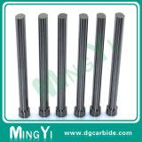 Poinçon de carbure de tungstène Wear-Resistant de nouveau produit pour le moule