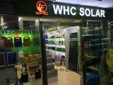 Batterij van de Laders van Whc de Beste Prijs Gewaarborgde 12V 65ah