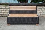 Im Freien Rattan des Teakholz-2-Seat/Weidenstuhl (LN-3001-2)