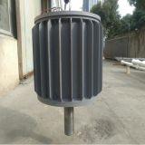 20kw AC à un aimant permanent du générateur 220V/360V avec l'arbre deux